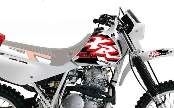 BLACKBIRD Dekor-Kit XR 600 88-00