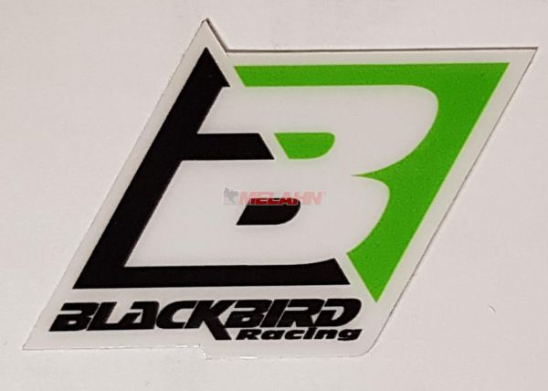 BLACKBIRD Aufkleber: Logo, 6,5x4,5cm, grün